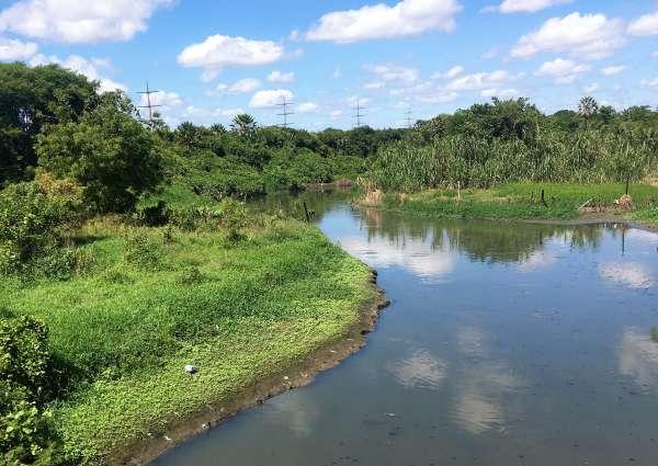 Trecho do rio Cocó onde foram colhidas amostras da água