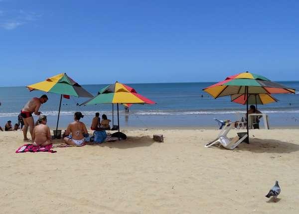 Banhistas sob sombrinhas na praia