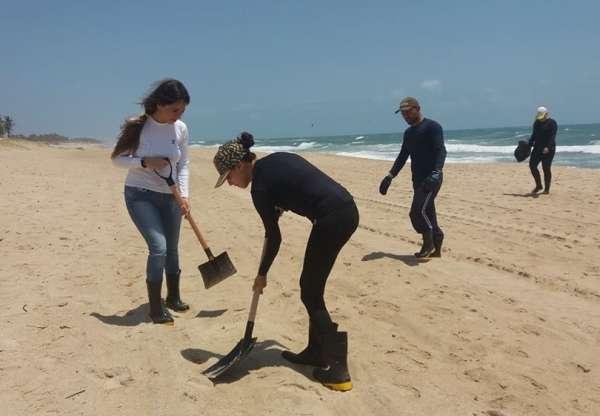 Técnicos da Semace recolhem flocos de óleo na Praia do Futuro